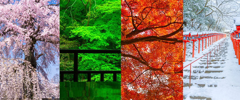 The Four Seasons in Kyoto